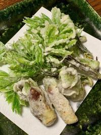 いつから山菜を好きになったのだろう - 秋田のテーブル、秋田のごはん