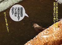 不安定な空模様! - Weblog : ちー3歩 Ⅱ