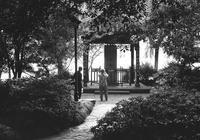 蘇堤春暁と杭州市民のいこい - 照片画廊