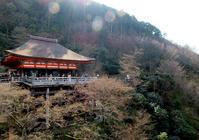 母と京都旅・清水寺から産寧坂 - 月の旅人~美月ココの徒然日記~