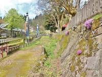 """28日会館周辺を""""春散歩""""です - 浦佐地域づくり協議会のブログ"""