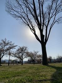 【開いた場所でも閉じた場所でも】 - Earth & Sky blog
