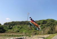 空にたなびく鯉のぼり - 島暮らしのケセラセラ