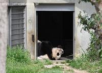 2019年3月王子動物園4その6 - ハープの徒然草