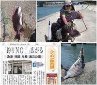コロナ禍釣りの楽しみも - 76歳 車いす釣師 博多湾ピンポイント奮闘釣り日誌
