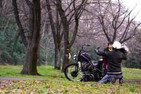 大石 真史 & Harley-Davidson FLT(2020.02.02/TOKYO) - 君はバイクに乗るだろう