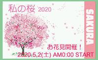 私の桜2020 - Ippo Ippo