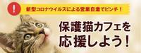 保護猫カフェ応援サイト - 素人木工雑貨と犬猫日記