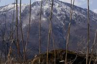 緩む山容 - フォトな日々