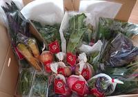 お取り寄せ能登のお野菜 - jujuの日々