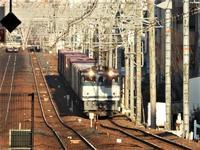 藤田八束の鉄道写真、貨物列車の写真@さくら夙川駅を通過する貨物列車の写真集・・・桜が終わり若葉の季節、四季の素晴らしさに感謝 - 藤田八束の日記