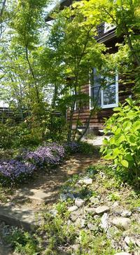 雑木の庭と子ども達と - 成長する家 子育て物語