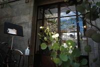 cinq埼玉県さいたま市浦和区/隠れ家カフェ ~ ブロンプトンと行こう 埼玉県さいたま市 その2 - 「趣味はウォーキングでは無い」