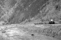 早春の久慈川にC56の汽笛が響く- 1985年・水郡線 - - ねこの撮った汽車