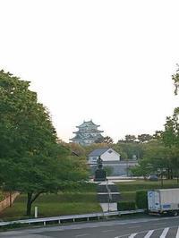 stay home と胡蝶蘭 - [YOC]山おやじブログ