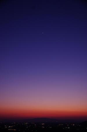 「遣る瀬ない夜」 - 光と彩に、あいに。
