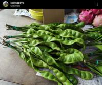 ペタイ、または臭い豆 - コタキナバル 旅行記・ブログ