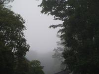 霧 - hibariの巣