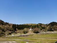 田舎便り122春になり・・・ - タワラジェンヌな毎日