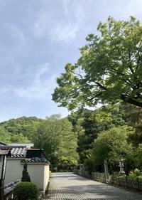 立夏 - g's style day by day ー京都嵐山から、季節を楽しむ日々をお届けしますー
