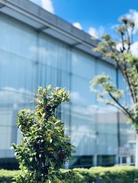 5月7日(木)フリー走行 - 新東京フォトブログ