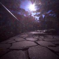 大田黒公園(紅葉です) - はりあなのこころ