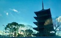 五重塔は仏教美術の粋をきわめたものである。 - ライブ インテリジェンス アカデミー(LIA)