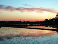 東金の朝焼け - 東金、折々の風景