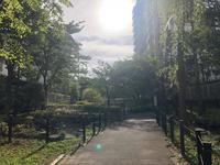 早起きは三文の徳 - Mamamayumi26's Blog