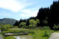 田植えが始まった - 自然がいっぱい4は終了しました。