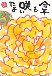 ツバメとバラ - きゅうママの絵手紙の小部屋