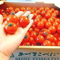 我が家のトマト事情♪レシピ付き -  川崎市のお料理教室 *おいしい table*        家庭で簡単おもてなし♪