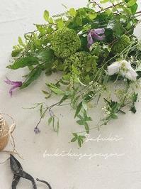 皐月はなの会のお花発送のおしらせ - tukikusa note