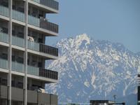 雪解けすすむ山々を仰いで - タビノイロドリ