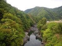 思わぬ樹林…舟山・宇津志 - 山にでかける日