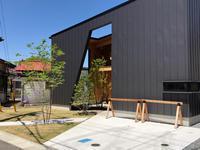 とらの間の家パトロール - 三楽 3LUCK 造園設計・施工・管理 樹木樹勢診断・治療