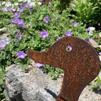 マイガーデンの宿根草とバラの記録 - 花の庭づくり庭ぐらしガーデニングキララ
