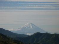 初夏の訪れ - 八ヶ岳 革 ときどき くるみ