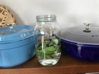 ミント酵母 - カフェ気分なパン教室  *・゜゚・*ローズのマリ