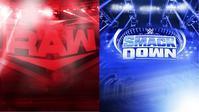 WWEサンダードームのルールとは? - WWE Live Headlines