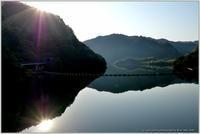 静かなダム湖 - 野鳥の素顔 <野鳥と日々の出来事>