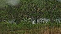 雷に霰な日は釣りには行かないこのブログは回想なのだ♪ - 「 ボ ♪ ボ ♪ 僕らは釣れない中年団 ♪ 」Ver.1