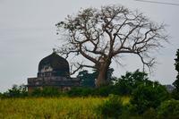 旅フォト:マンドゥ(マディヤ・プラデーシュ州、インド) - 映画を旅のいいわけに。