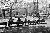 白石東冒険公園の大人たちと駅前公園の子供たち - 照片画廊