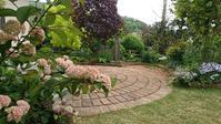今日の庭とたくさんの贈り物♪ - 今から・花