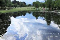 日光だいや川公園~野鳥もトンボもいっぱい~ - 日々の贈り物(私の宇都宮生活)