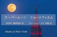 プロジェクトリターン紹介④ 【スーパームーン ショートフィルム DVD】 - Triangle NY