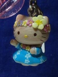 Hawaiian Kitty - Stuffs_we_care