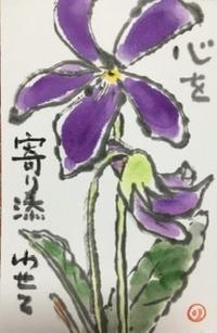 清々しい花♪♪ - NONKOの絵手紙便り