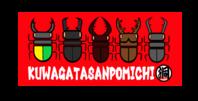 長崎県壱岐でデッカイヒラタをバンバン採りまくる!まさにパラダイス♪YouTube公開中 - くわがた散歩道